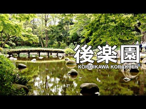 Koishikawa Korakuen - Japanese Garden, Tokyo ᴴᴰ ● 小石川後楽園 東京 (2016 Edition)