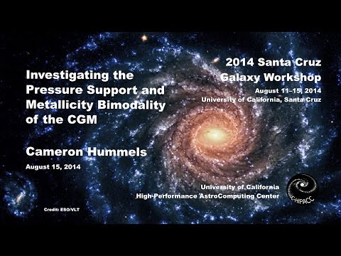 Investigating the Pressure Support and Metallicity Bimodality of the CGM - Cameron Hummels