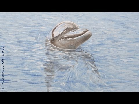 How to Draw a Dolphin With Color Pencils