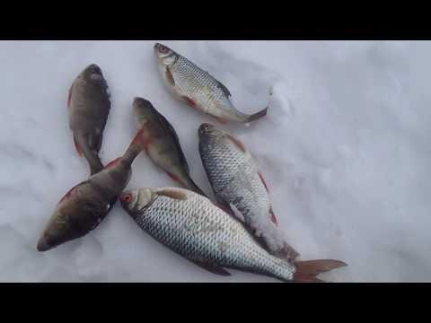 зимняя рыбалка на карпа - 2018-03-18 20:23:06