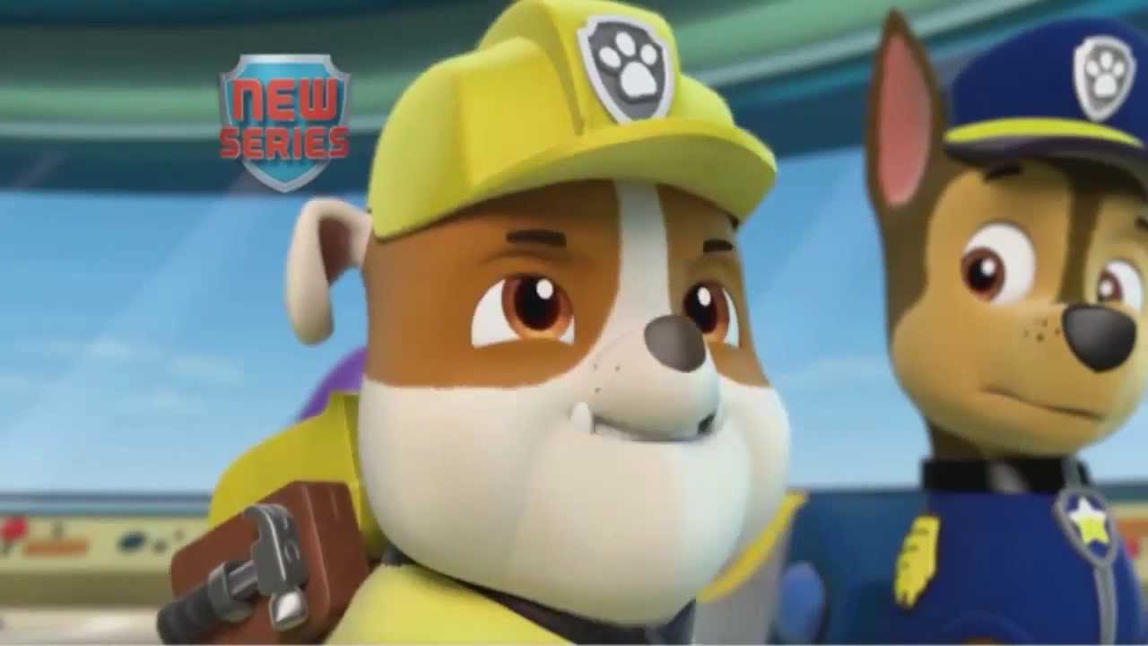 Paw Patrol Meet All Pups Youtube