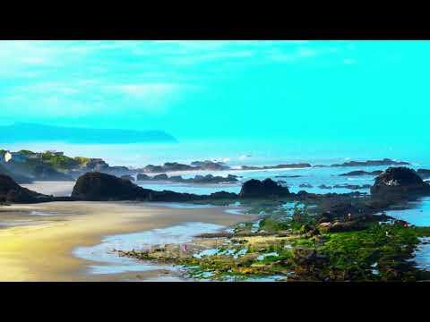 Oregon USA Ocean Coastline