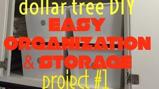 Dollar Tree Diy: Organization & Storage