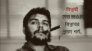 চে গেভারা জীবনী Che Guevara