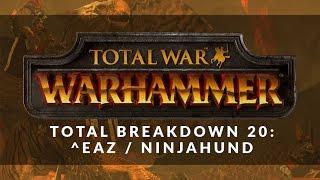 Total Breakdown 20 - Warriors of Chaos vs Empire (Eaz vs Ninjahund) - Total War Battle Replay