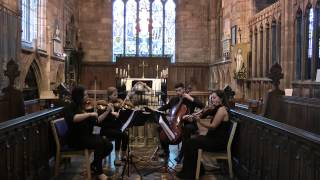 Make You Feel My Love (Adele) - Wedding String Quartet