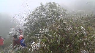Lào Cai: Khu du lịch quốc gia Sa Pa chìm trong rét sâu 8,3 độ C