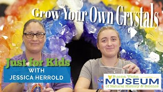 Just For Kids STEM Activities: Grow Your Own Crystals