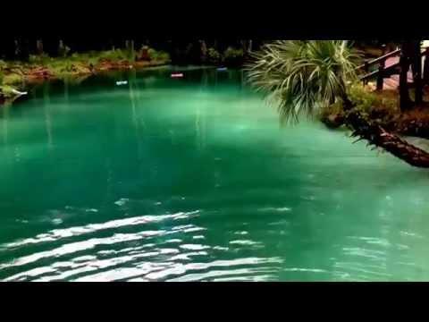Live Merman swimming in lagoon sighting footage
