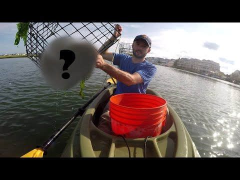 Kayak Crabbing In New Jersey! We Caught WHAT In That Trap?
