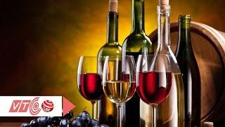 Tưng bừng lễ hội rượu vang quốc tế   VTC