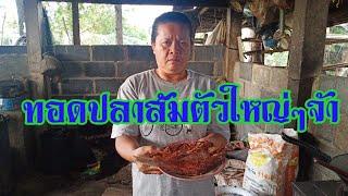 #ทอดปลาส้มตัวใหญ่ๆเต็มกะทะสั่งได้จ้า0932985082