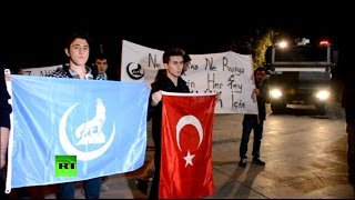 Режим Эрдогана пользуется поддержкой экстремистской группировки «Серые волки»