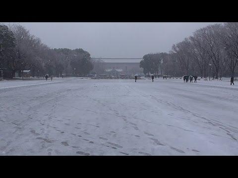 東京 谷中と上野公園の雪景色 1 Yanaka and Ueno Park of snow, Taito, Tokyo