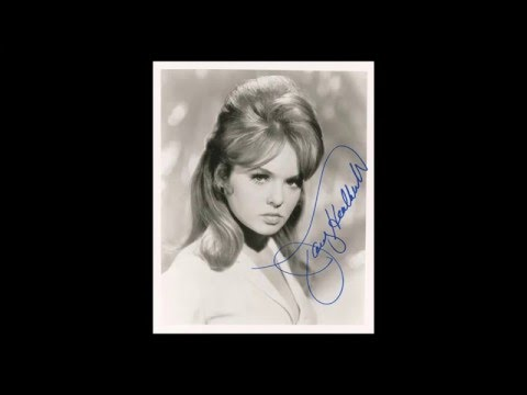 Joey Heatherton - Hullaballoo - Northern Soul