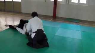Tecniche di Aikido  per preparazione esame 1 Dan