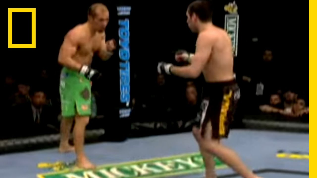 world of mixed martial arts 3 free download
