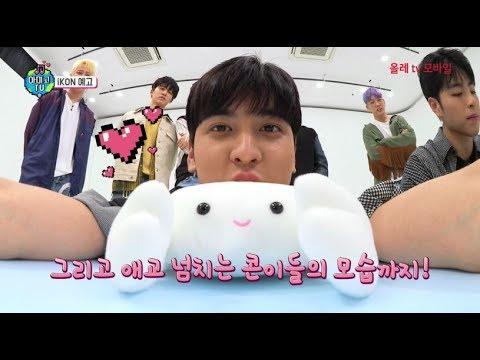 iKON on AMIGO TV Season 4 - YG Family