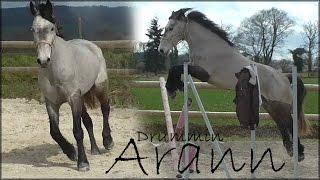 Drummin Arann ♥