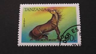 Postage stamp. TANZANIA. thorougbed horse. 1993. Price 200/.