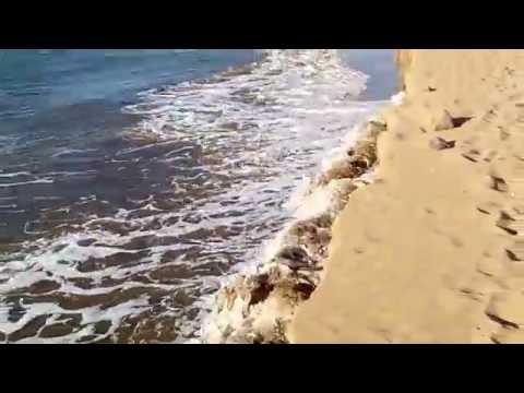Strand von Maspalomas 10.11.2016
