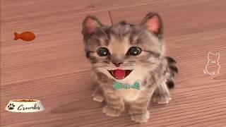 Мало заботы о животных котенка мой любимый мультфильм игры забавы для малышей видео для детей
