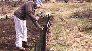 Fencing A Vegetable Garden