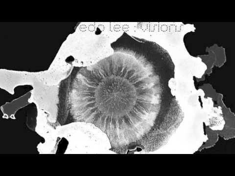 Edo Lee x Iota - Ivory (feat. Ashley Cruz)