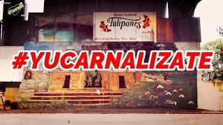Visitando el ex restaurante TULIPANES y la disco A GOZAR ¿alguien vive ahí? hay un TOLOC atrapado😱