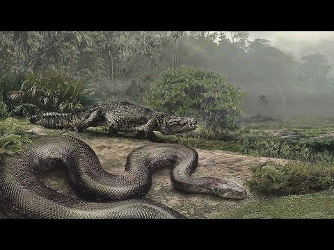 Thumbnail: World's BIGGEST Snake ever, Titanoboa