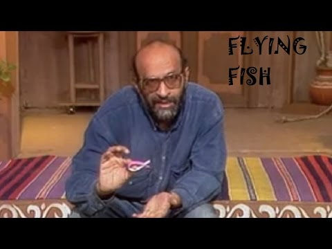 FLYING FISH - BENGALI  - Simplest Flying Toy!