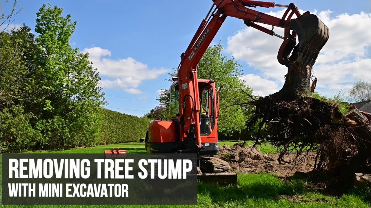 Tree Stump Removal With Excavator Attachments
