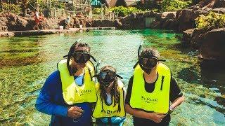 Rainbow Reef Snorkeling at Aulani, A Disney Resort