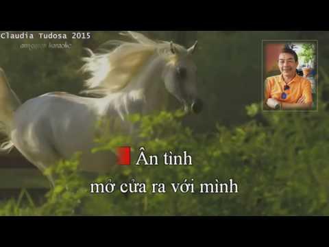 Vết thù trên lưng ngựa hoang - annguyen karaoke