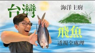 飛魚來了,台灣飛魚全處理 |海鮮處理|海洋主廚愛爾文