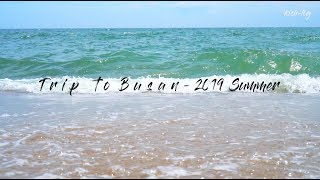 Trip to #Busan - vlog with so many oceans