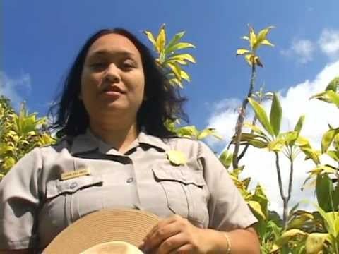 National Park of American Samoa in 62 Seconds