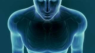 Douleurs au cœur : 3 signes d'alerte