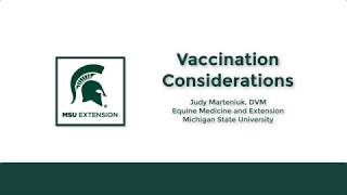 Horse Vaccination Considerations