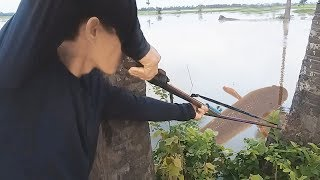Amazing Creative Man Make Bow Fishing  With Plastic Pipes To Catch A Lot Of Fish In Cambodia