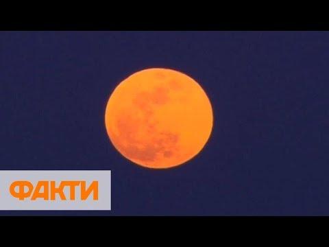 Кровавая Луна: когда и где будет видно первое лунное затмение 2019