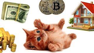Куда вкладывать ДЕНЬГИ (Сказки про доллар 10)