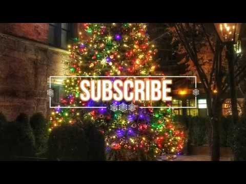 CHRISTMAS TREE DECORATING IDEAS Colored Lights