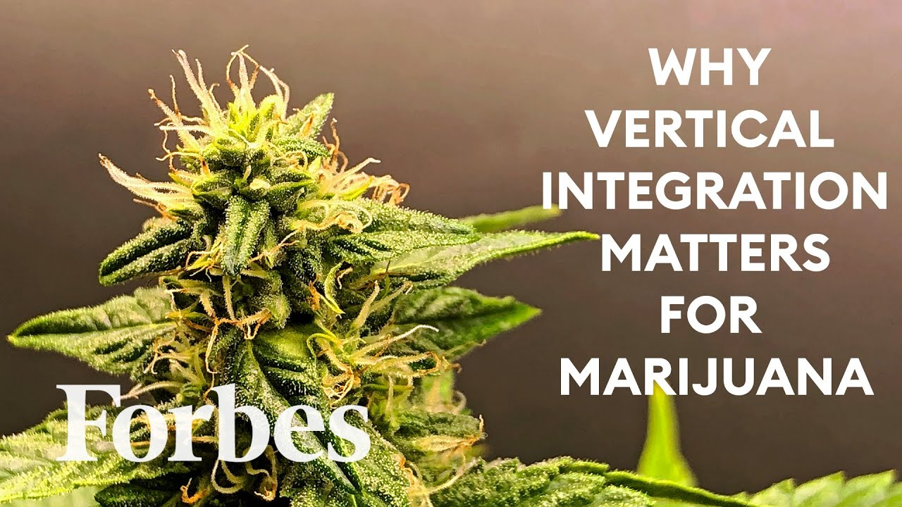 What Is Vertical Integration And Why Is It A Hot Topic In The Cannabis Industry? | Defined