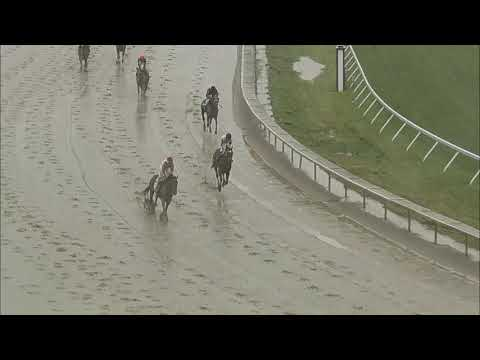 video thumbnail for MONMOUTH PARK 5-29-21 RACE 11