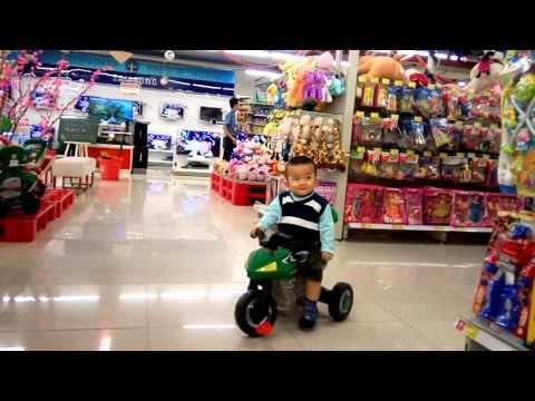 Gấu tập chạy xe moto