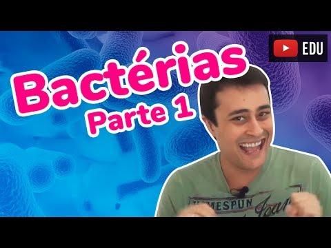Reino Monera - Bactérias - Parte 1 - Prof. Paulo Jubilut
