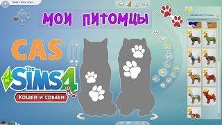 ✦ CAS: Создаю своих домашних питомцев в The Sims 4 Кошки и Собаки | 5 фактов ✦