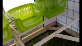 Dutch Hollow Hoop Coop And Chicken Tractor Tour