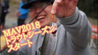 【管釣り】トラウトシーズンスタート【MAV】